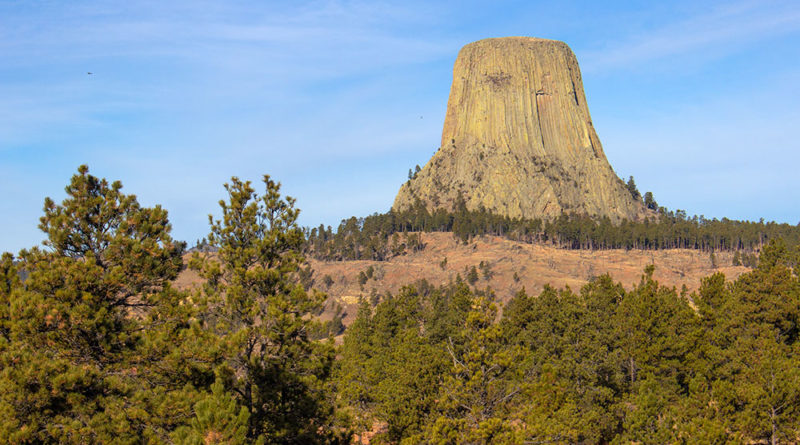 Devils Tower Animals: Close Encounters of the Wild Kind