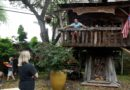 Texas emergency room doctor self-quarantines in his kids' backyard treehouse
